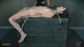 It is about time to discover a little slavery with slutty Paintoy Emma