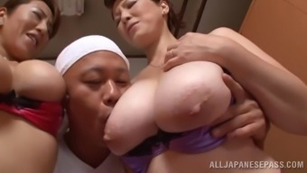 Excellent Oriental pornstars by using big titties get chastisize within the ffm threesome action