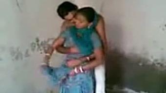 Meek punjabi brand new get married a few having fast