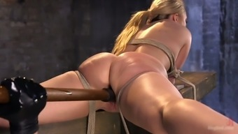 A number of extreme anal genital stimulation is the thing that hogtied nasty person AJ Applegate needs