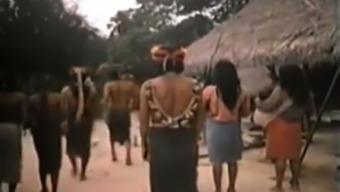 crazy parody Tarzan part 3(three)