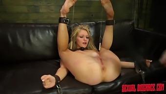 Alli Rae #2 Sexual Disgrace Blasted