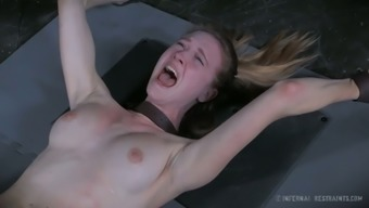 Crucified leggy GF Ashley Road gets her tight pussy pleasured with item tough